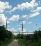 Scenes from the Schuylkill River Trail
